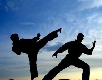 16 ноября. Чемпіонат України з карате