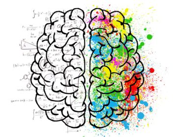 7 правил, как улучшить работу мозга